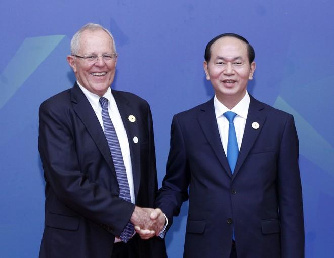 Chủ tịch nước Trần Đại Quang chủ trì Đối thoại Lãnh đạo APEC với ABAC ảnh 8