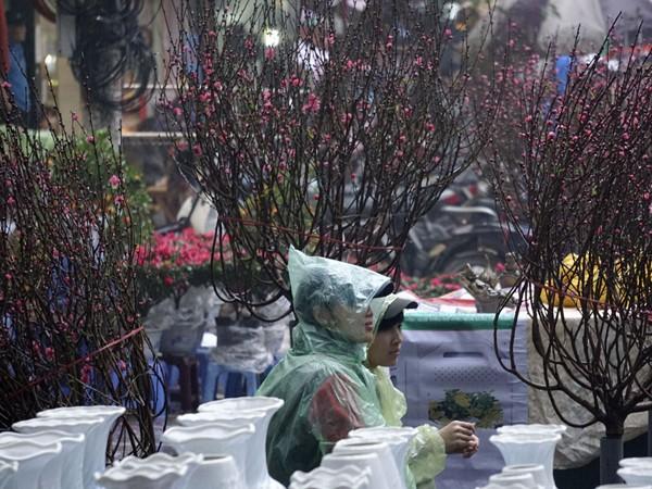 Phong vị Tết ở chợ phiên phố cổ ảnh 3