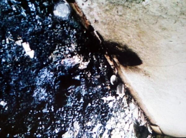 Hình ảnh hiện trường vụ cháy khiến 5 người trong gia đình bị chết ngạt ảnh 8