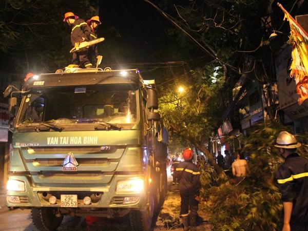 Lực lượng cứu hộ đang xử lý sự cố cây đổ đè vào đường dây điện, mắc vào xe tải