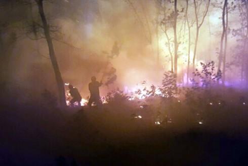 Lực lượng chức năng nỗ lực chữa cháy rừng chiều tối 29 Tết