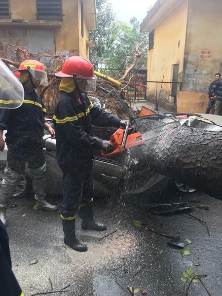 Lực lượng CNCH nhanh chóng cưa cây giải phóng đường đi cho các phương tiện