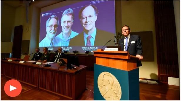 Mở màn mùa Nobel 2019: 3 nhà khoa học Mỹ, Anh chia giải Nobel Y học