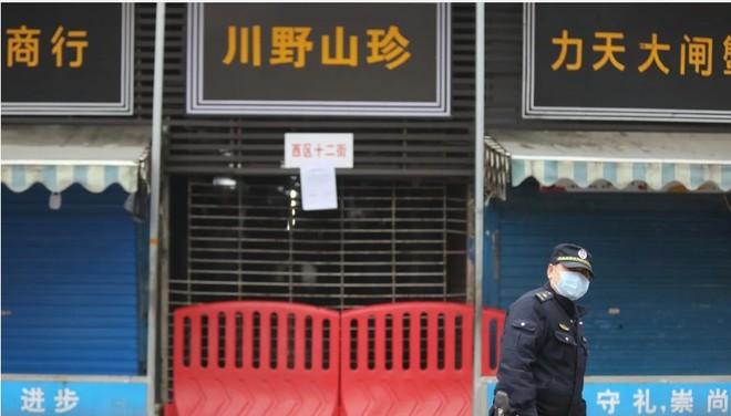 Virus Covid-19 không từ chợ hải sản Vũ Hán thì từ đâu?