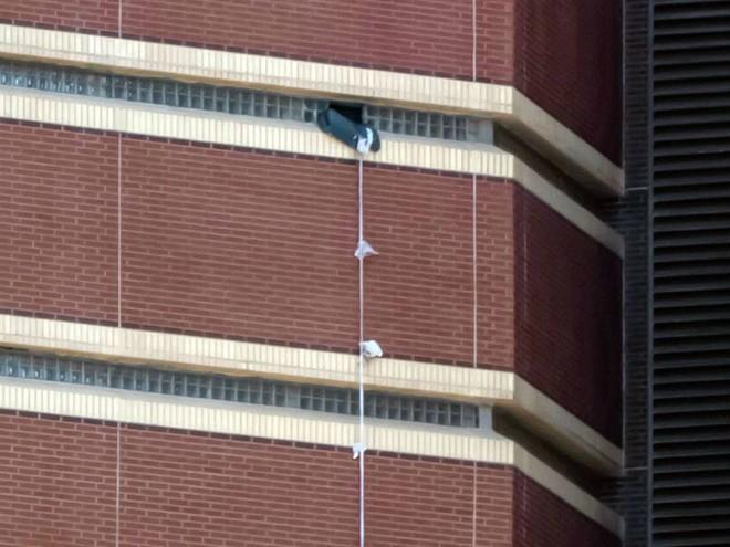 Mỹ: Phạm nhân giết người vượt ngục từ cửa sổ phòng giam tầng 12