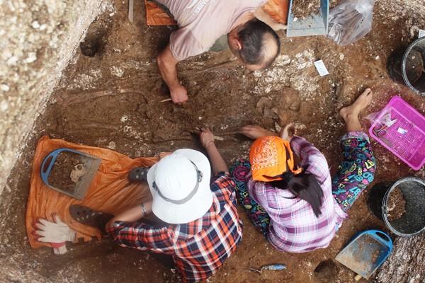 Một số hình ảnh các chuyên gia khảo cổ khai quật và phát hiện 3 bộ xương người Việt cổ tại di chỉ Rú Điệp.