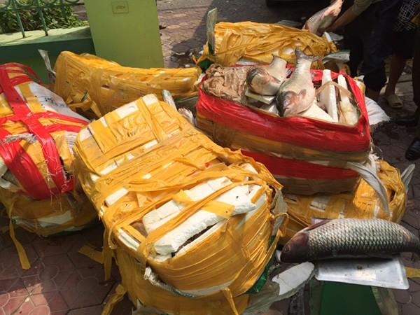 Cá trắm, ba ba Trung Quốc từ biên giới tuồn về Hà Nội tiêu thụ ảnh 3