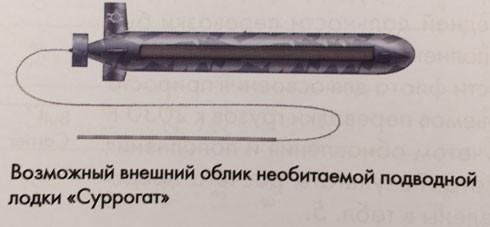 Mô tả hình ảnh của Суррогат (ảnh defence.ru).