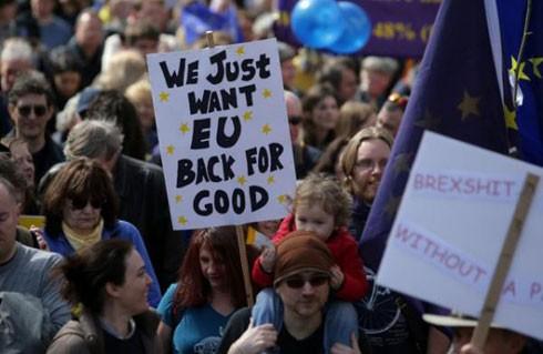 Hàng chục nghìn người ủng hộ Liên minh châu Âu (EU)