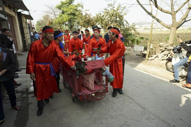 Lễ hội chém lợn, không diễn ra công khai giữa sân đình