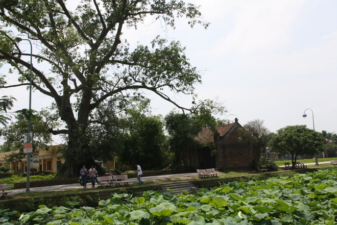 Đây là chiếc cổng cổ duy nhất còn ở Đường Lâm, con đường dẫn thẳng vào thôn Mông Phụ