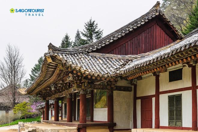 Chùa Pohyeon cổ kính ở vùng núi Myohyang