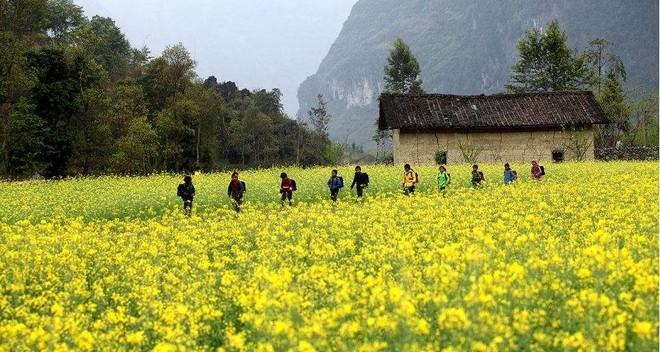 Mộc Châu hấp dẫn du khách với khí hậu trong lành và thiên nhiên tươi đẹp