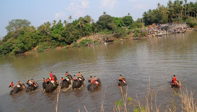 Hấp dẫn cuộc thi bơi dành cho voi trên dòng sông Sêrêpốc ảnh 2