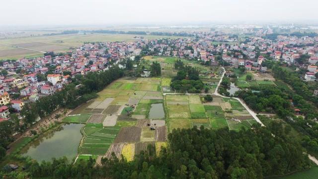 Khai quật khảo cổ học thành Luy Lâu