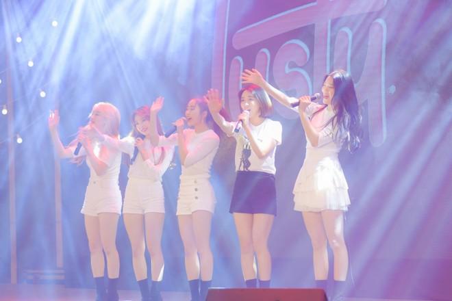 Biểu diễn Kpop tại hội nghị