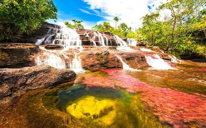 Sông Cano đứng đầu danh sách 50 kỳ quan thiên nhiên đẹp nhất thế giới do Insider bình chọn