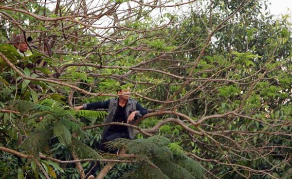 Người Nghệ An leo cây, trèo lên di tích lịch sử xem bóng đá ảnh 2