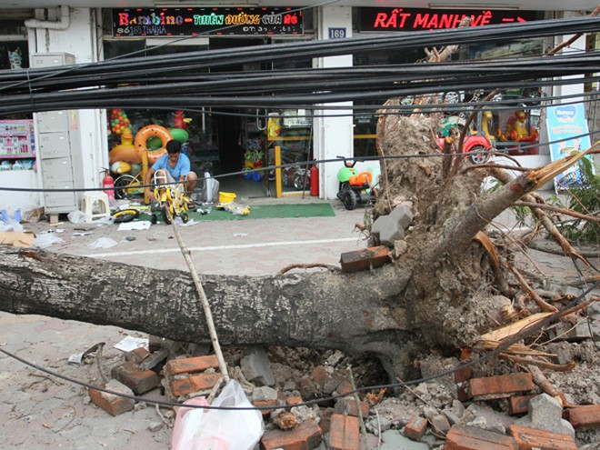 Đường phố Hà Nội một ngày sau giông lốc kinh hoàng ảnh 12