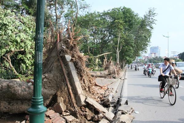 Đường phố Hà Nội một ngày sau giông lốc kinh hoàng ảnh 5