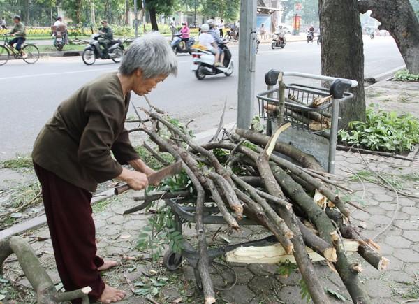 Đường phố Hà Nội một ngày sau giông lốc kinh hoàng ảnh 4
