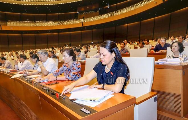 Quốc hội biểu quyết thông qua Luật Tố cáo (sửa đổi)