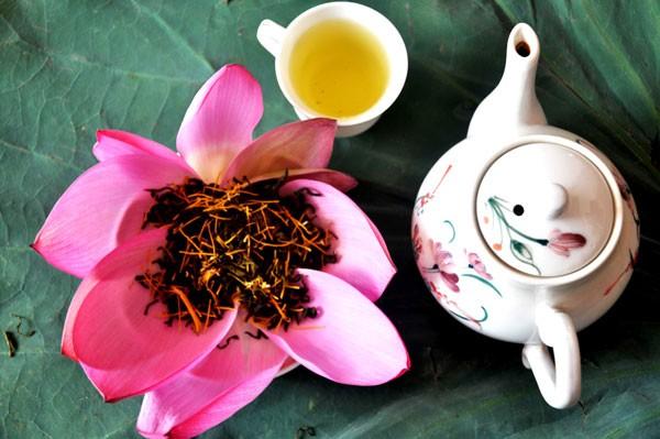 Tao nhã thú trà sen bên hồ trong sương sớm ảnh 3
