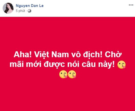 """Mừng Việt Nam vô địch AFF Cup, Facebook """"sao Việt"""" ngập sắc đỏ ảnh 2"""