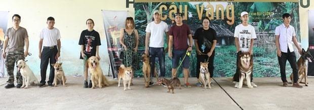 Buổi casting có sự tham gia của rất nhiều giống chó khác nhau