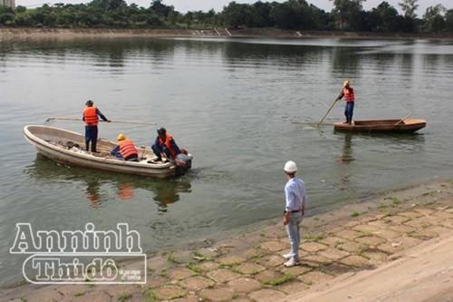 Các lực lượng hữu quan vớt cá chết trên hồ Linh Đàm, Hà Nội