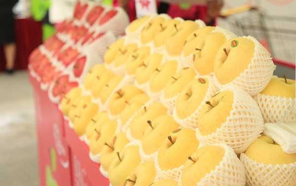 Táo Aomori Nhật Bản bày bán tại chuỗi siêu thị Intimex, Big C, Unimart và các cửa hàng hoa quả cao cấp khác với giá bán lẻ cạnh tranh
