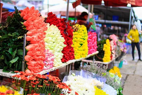 Những sắc hoa Tết ngập tràn phố phường Hà Nội ảnh 7