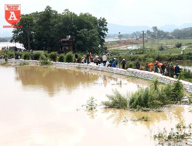Chiều 30-7, mực nước sông Bùi lên cao 7,5m, huyện Chương Mỹ đã huy động lực lượng tại địa phương để chống tràn đê