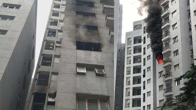 Hà Nội: Tạm đình chỉ giải quyết nguồn tin tội phạm với 7 trường hợp vi phạm phòng cháy