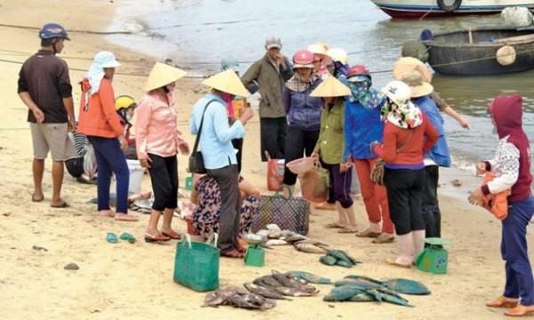 Hiện chưa có kết quả chính xác đánh giá độ an toàn thủy sản ở biển miền Trung