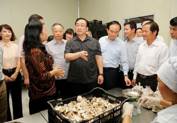 Bí thư Thành ủy Hà Nội Hoàng Trung Hải thăm một trang trại trồng nấm tại