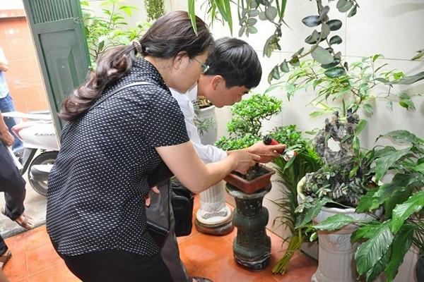 Giám sát tại điểm có nguy cơ bùng phát sốt xuất huyết ở Hà Nội