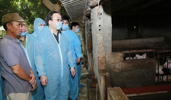 Bí thư Thành ủy Hoàng Trung Hải kiểm tra phòng, chống dịch tả lợn châu Phi tại một hộ chăn nuôi ở xã Đông Yên