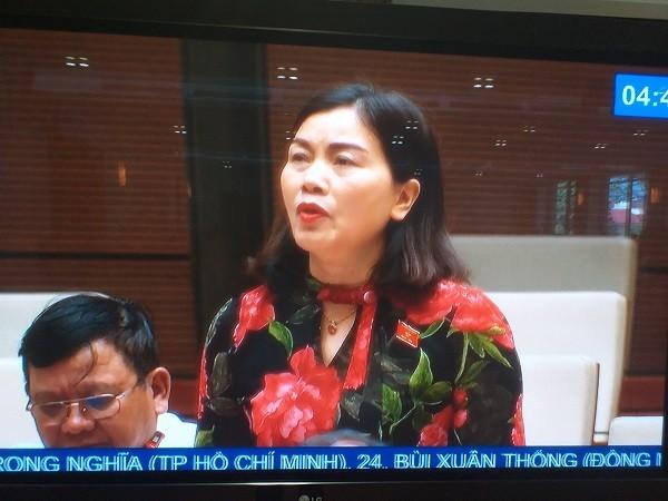 ĐBQH Nguyễn Thị Xuân (Đắk Lắk) thảo luận tại phiên họp