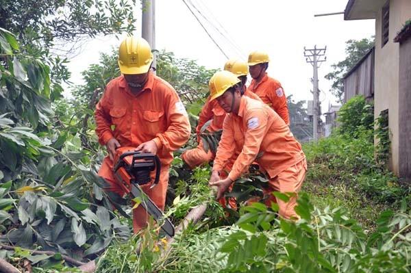 Phát quang để đảm bảo an toàn đường điện