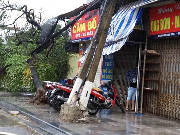 Cột điện bị bão quật đổ sáng 28-7