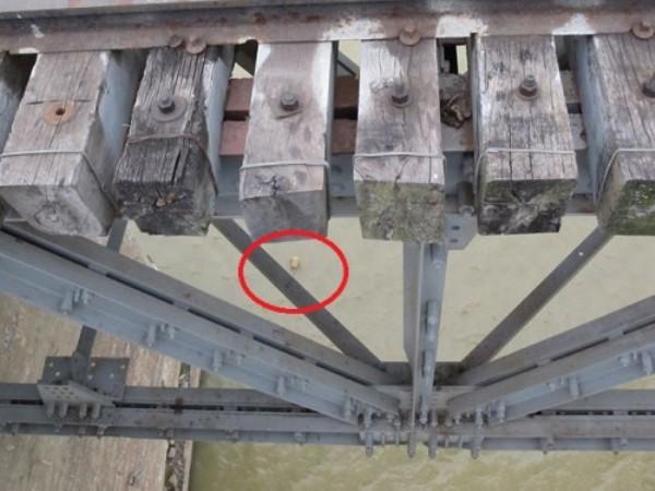 Quả bom dưới chân cầu Long Biên (khoanh đỏ)