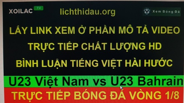 Đề nghị xác minh việc xoilac.tv thu tín hiệu trái phép trận đấu giữa Đội tuyển Olympic Việt Nam và Olympic Bahrain tại Asiad 2018
