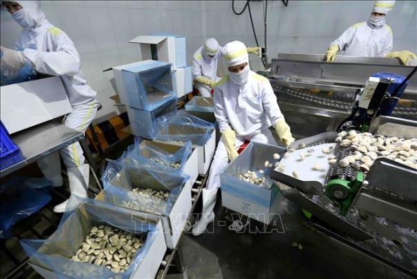 Thị trường Trung Quốc mở cửa thêm cho thủy sản Việt Nam
