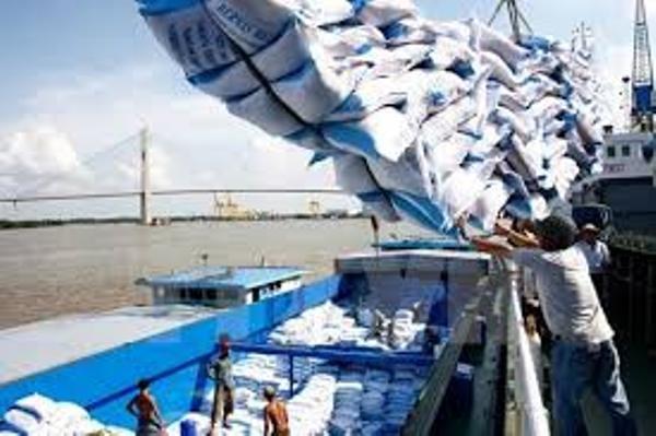 Kiểm tra lại lượng gạo tồn kho tại các doanh nghiệp và trong dân