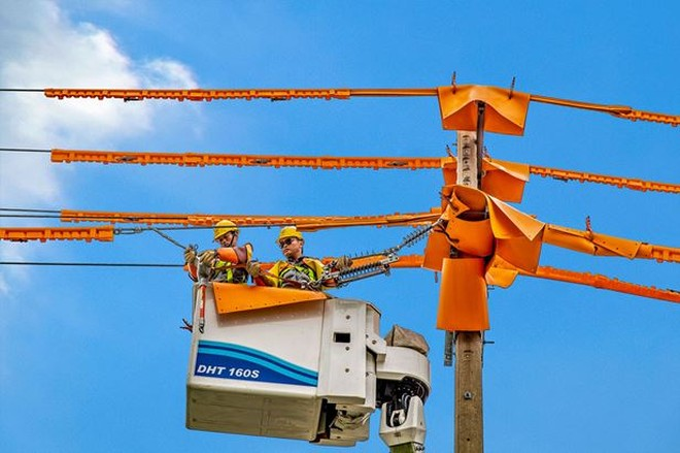 Giá điện giữ ổn định trong năm 2020