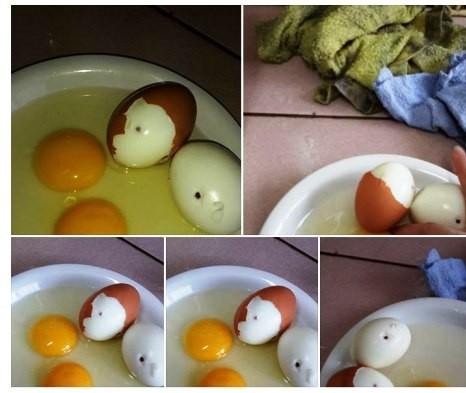 Không thể có chuyện trứng gà bị tiêm máu nhiễm HIV