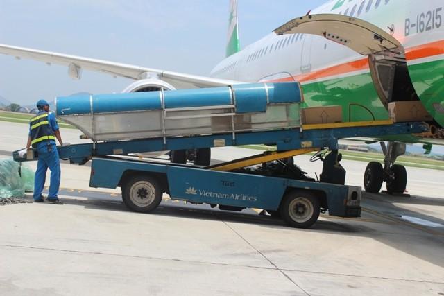 Hành lý được kiểm tra, vận chuyển như thế nào ở sân bay? ảnh 5