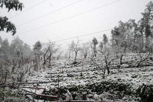 Cuối tuần này có tuyết rơi ở vùng núi phía Bắc ảnh 1