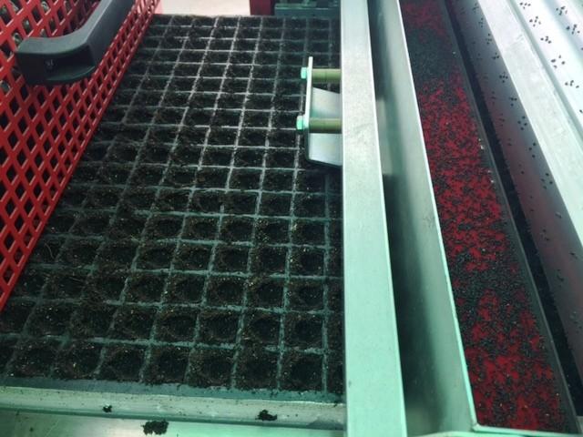 Toàn bộ các giai đoạn, từ gieo hạt đến thu hoạch đều được kiểm soát tự động và khép kín. Công nghệ gieo hạt bằng máy đạt độ chính xác gần như tuyệt đ